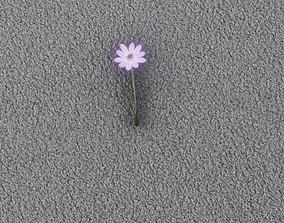 Violet Flower - Verion 6 - Object 33 3D asset
