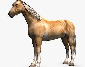 Palomino Horse 3D model