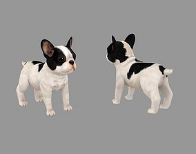 Cartoon pet puppy - French Bull Dog - baby dog 3D model