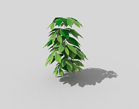 low poly ground plant 3D model VR / AR ready
