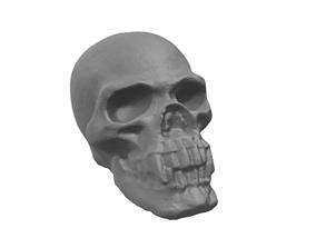 Vampire Skull 3D printable model
