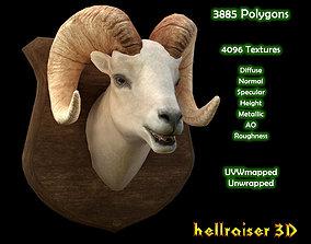 3D model Ram Head - PBR - Textured