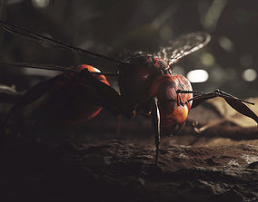 Japanese Hornet Wasp Insect 3D asset
