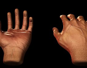 3D asset Male Hands - VR Compatible