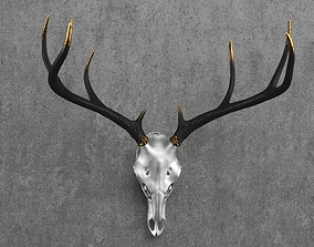 3D model Deer Skull Mount