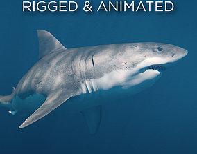 3D model animated animation White Shark