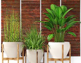 3D Plants collection pot