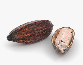 3D model other Cocoa Pod