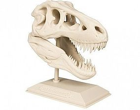 3D printable model T-Rex Dinosaur Skull