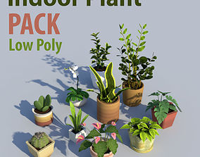 Indoor Plant Pack Low Poly 3D model