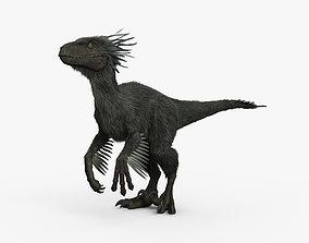 3D model Raptor HD
