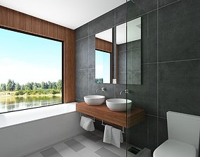 Contemporary Bathroom Scene 3D model