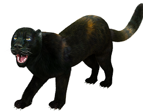 Fur Black Panther Rigged 3D model low-poly