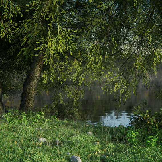 Forest at the river-side