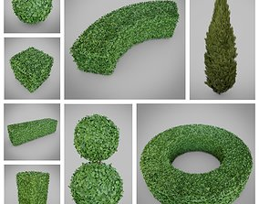 3D Topiary Bush Collection