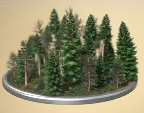 3D asset Coniferous Forest - Pines And Spruce Scene