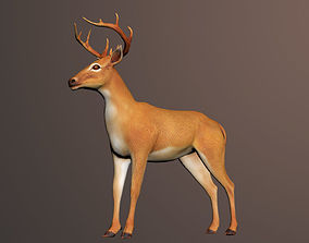 rigged Deer Rigged 3D Model