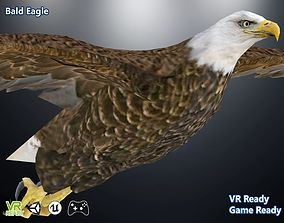 3D asset Bald Eagle Game Ready