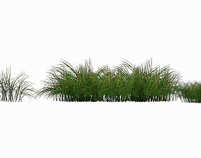 3D Lowpoly Grass Pack2