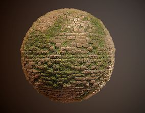Brick Vines PBR SEAMLESS Texture 3D model vines