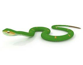 3D Wagler s Pit Viper Green Snake