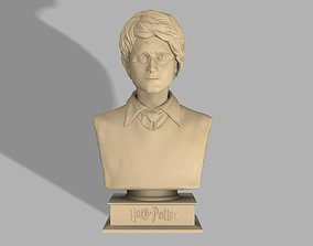 3D printable model Harry Potter bust Harry Potter figure