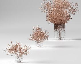 3D Dry plants set - 3 models