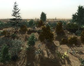 24 Afghan Vegetation Models For Games low-poly