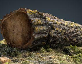 Dead trunk 6 3D model