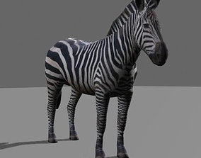 Incredible LOW POLY Zebra - 3d model animated