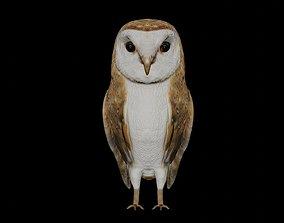 Barn Owl and white goose bird 3D asset