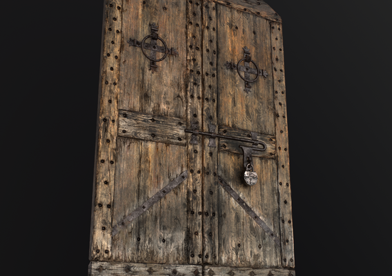 Old Medieval Door (Only Door)
