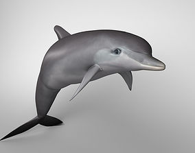 Dolphine 3D model