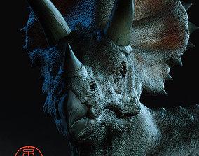 Triceratops 3D print model