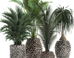 Houseplants in a pot for the interior 730 3D model