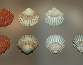 3D model Mussel01 - 1k Triangles-Mesh and Decal
