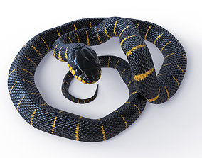 3D model Animated Mangrove Snake