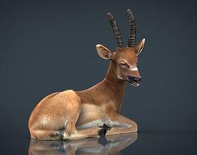 3D model African Antelope