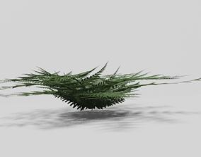 3D model Green Fern For Forest Floors