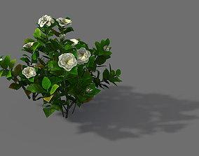 3D Game Model - Forest - Shrub 09
