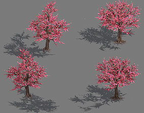 3D Daughter village plant - peach tree 032
