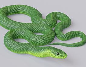 Animated Green Mamba 3D asset