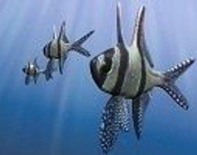 Benggai cardinal marine fish 3D asset