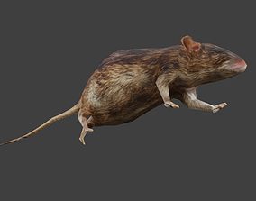 3D model low poly textured rigged and animated rat