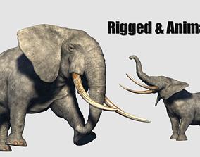 3D model tusk animated elephant