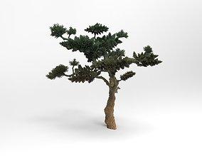 3D print model Pine Tree