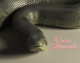 Green Anaconda 3D Model animated