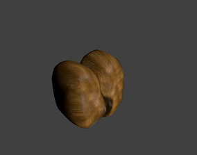 3D model Coconut Coco De Mer