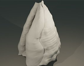 Shell 3D print model