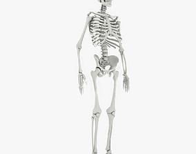 Human Skeleton 3D model realtime